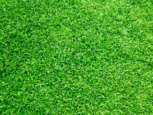 Konstgräs i närbild